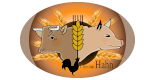 hofladen-hahn_logo_f